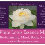 White Lotus Essence, Charwam