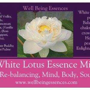 White Lotus Essence, Charwam